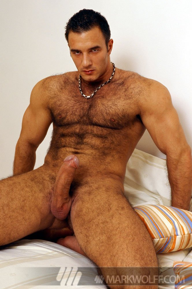 Muscular hung gay men photos
