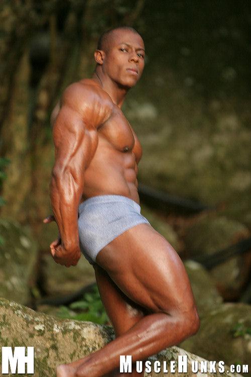 Orso Gay 95